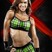 WWE 13 Roster Reveal Video And Artwork