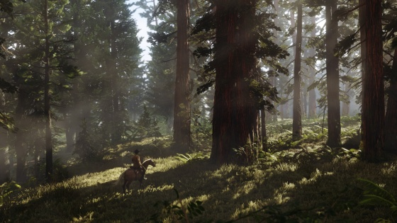 Red Dead Redemption 2 5_22_17 Screenshot (7)