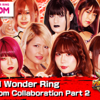 Fire Pro Wrestling World Stardom Part 2 DLC Details, Trailer, And Images